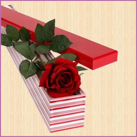 Роза в коробке
