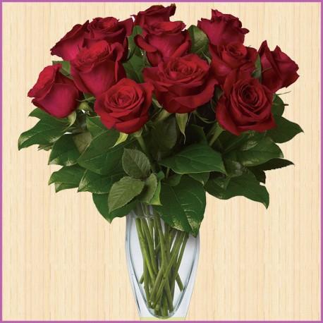 Роза бордовая